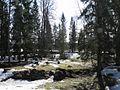 Viesītes kapi - panoramio.jpg