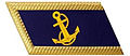 Vietnam People's Navy general rank lapel.jpg