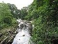 View downstream from the Ganllwyd footbridge - geograph.org.uk - 489905.jpg