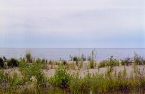 Lesser Slave Lake - Slave Lake shoreline