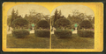 View of a garden with topiary work and century plants in urns, by Seaver, C. (Charles).png