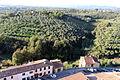 Vinci, castello dei conti guidi, veduta della torre 01.JPG