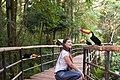 Visitante no Viveiro Aves de Rios e Mangues.jpg