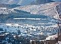 Volovets'kyi district, Zakarpats'ka oblast, Ukraine - panoramio - Leonid Andronov (8).jpg