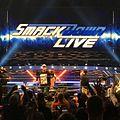 WWE Smackdown John Cena (32091029545).jpg