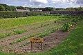 Walled garden, Balfour Castle - geograph.org.uk - 1446193.jpg