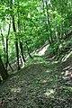 Wanderung hin und rück nach Stolberg-Harz von Rodishain - Um und auf dem Ronneberg - panoramio (3).jpg