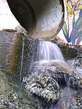 Water flowing out of a drainage pipe in Chapel Hill.jpg