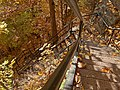 Webster's Falls stairs (Fall 2005).JPG
