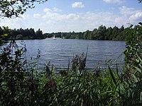 Weichelsee (Rotenburg) - 02.jpg