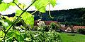 Weinberge über dem Kloster Bronnbach.jpg