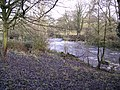 Weir on the Wyre - geograph.org.uk - 98098.jpg