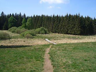 Weißer Stein (Eifel) - Boardwalk leading to the Weißer Stein rocks in Belgium