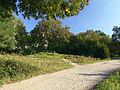 Weisser See 070917 05 Garten Blick Richtung Berliner Allee Sueden (DSC05632).jpg