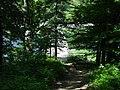 Wellston, Ohio 2002 dsc02292 (25937508811).jpg
