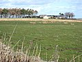 Whickham Grange Farm - geograph.org.uk - 357728.jpg