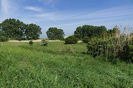 Wiki DSC00685 Lochwiesen WDPA 164496.jpg
