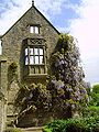 Wisteria at Nymans Gardens, West Sussex, England May 2006.JPG