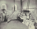 Women picking cotton waste for use in explosive manufacturing b10154140 020 tif 5h73px55z.tiff