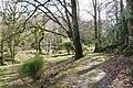 Woodland walk. - panoramio.jpg