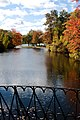 Worcester Massachusetts Elm Park Pond.jpg