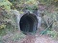 Yamanokami Tunnel.jpg