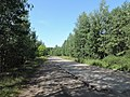Yaroslavsky District, Yaroslavl Oblast, Russia - panoramio (110).jpg