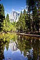 Yosemite Valley-15.jpg