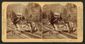 """I helped to build Pike's Peak railroad myself,"" Colorado, U.S.A, from Robert N. Dennis collection of stereoscopic views 2.png"