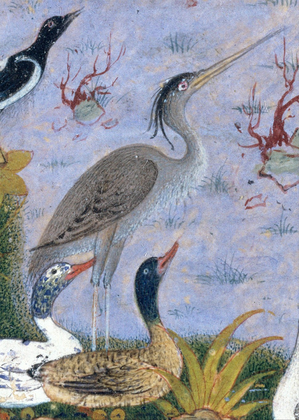 %22The Concourse of the Birds%22, Folio 11r from a Mantiq al-tair (Language of the Birds) MET DT227736