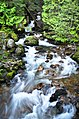 '10 creek on Little Slocan N rd - panoramio.jpg