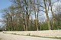 Антопіль парк 6.jpg