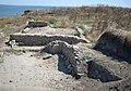 Археологічні розкопки 922190.jpg