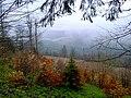 Вид на Карпати з гори Буковель.jpg