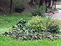 Гомель. Парк. У Лебяжьего озера. Фото 69.jpg