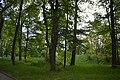 Парк Асмолова на Троїцькій.jpg