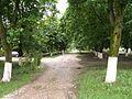 Рабочий поселок Мостовский 03.jpg