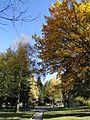 Разлог 2012 November - panoramio (35).jpg