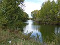Река Урал - panoramio (22).jpg