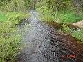 Река - panoramio - Andrey Martynov.jpg