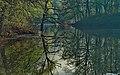 Самарская Лука. Разлив в районе Федоровских лугов 6.jpg