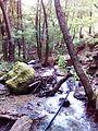 Смоларски водопад 7.jpg