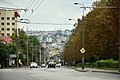 Тернопіль - Вулиця Бережанська - 17097709.jpg