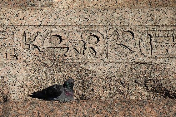 Университетская набережная (IMG 1333) элемент постамента сфинкса фараона Аменхотепа III.jpg