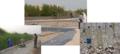 الشكل (2-11-1) صور لمحطة تعمل بالأراضي الرطبة في دولة الكويت مع عينات دخول وخروج.png