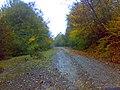 جاده بهشت البته در حوالی کیاسر - panoramio.jpg