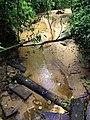 লাউয়াছড়া জাতীয় উদ্যানের ভিতরে কোনো এক অজানা ক্ষণজন্মা পানির ঝিরি.jpg