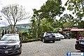 【新北美食】五葉松庭園餐廳 (29651328193).jpg