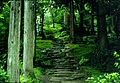 上杉謙信墓所/林泉寺 - panoramio.jpg