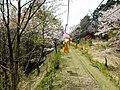 妙見リフト - panoramio.jpg